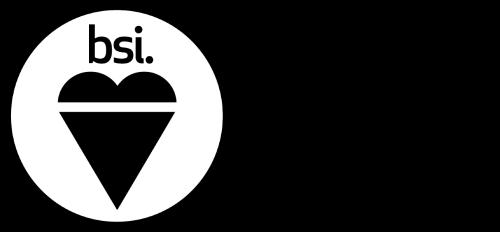 BSI ISO 9001-2015 Logo